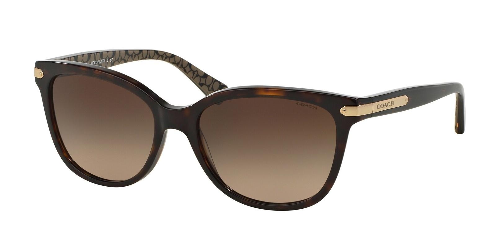 Coach HC8132 L109 Sunglasses
